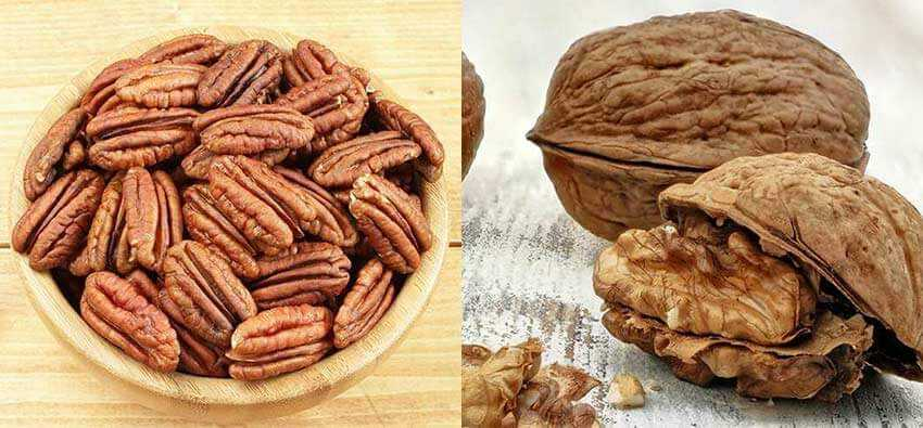 pecans_vs_walnuts