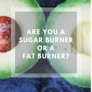Sugar Burner vs Fat Burner