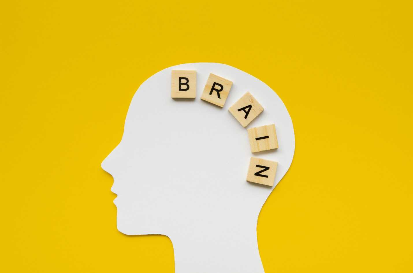 Keto Diet Effect on Brain: The Effects of Ketogenic Diets on Brain Health Bariatric Station