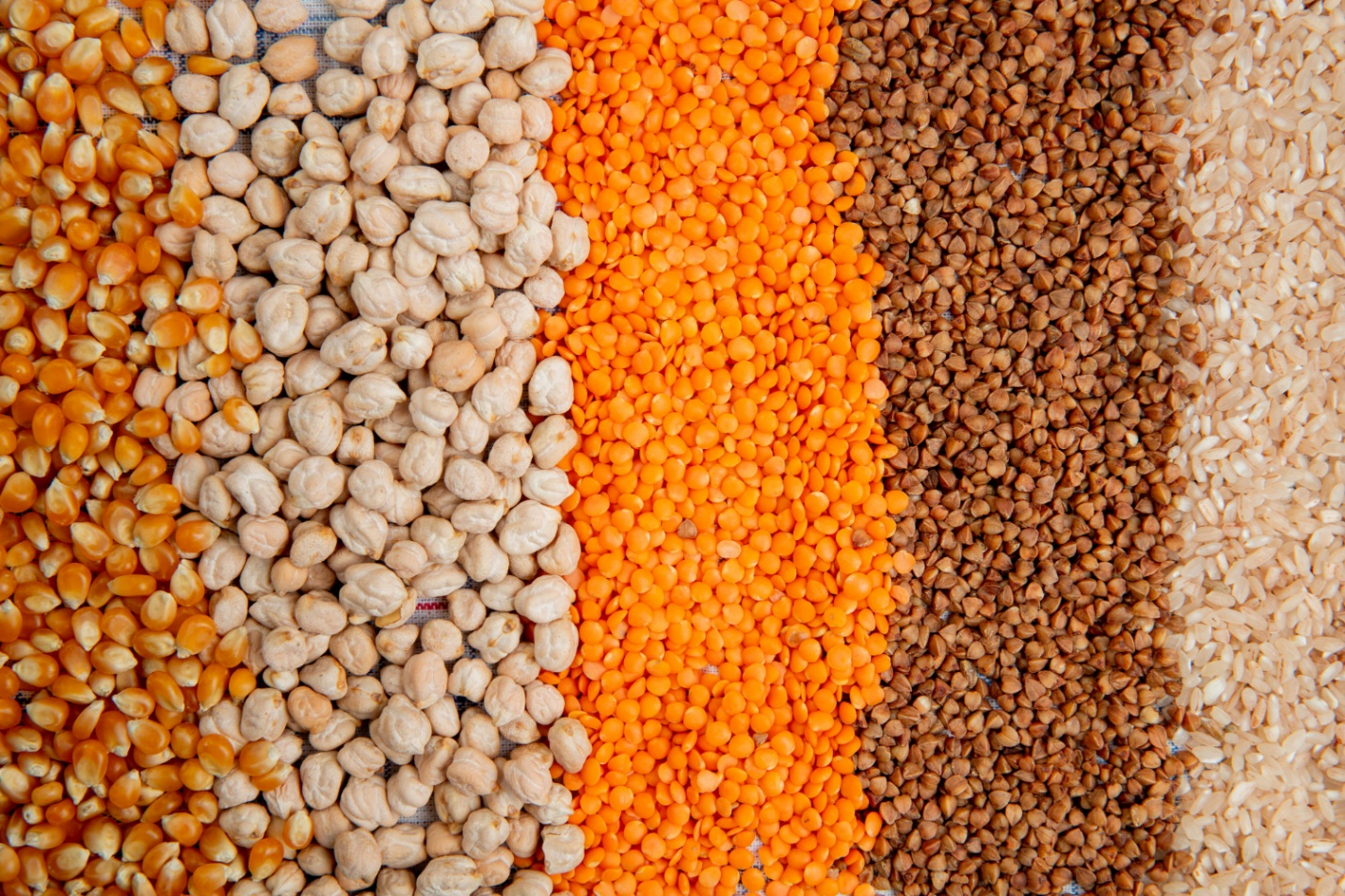 Are Lentils Keto? Myths, Facts and Substitutes about Lentils in Ketogenic Diet Bariatric Station