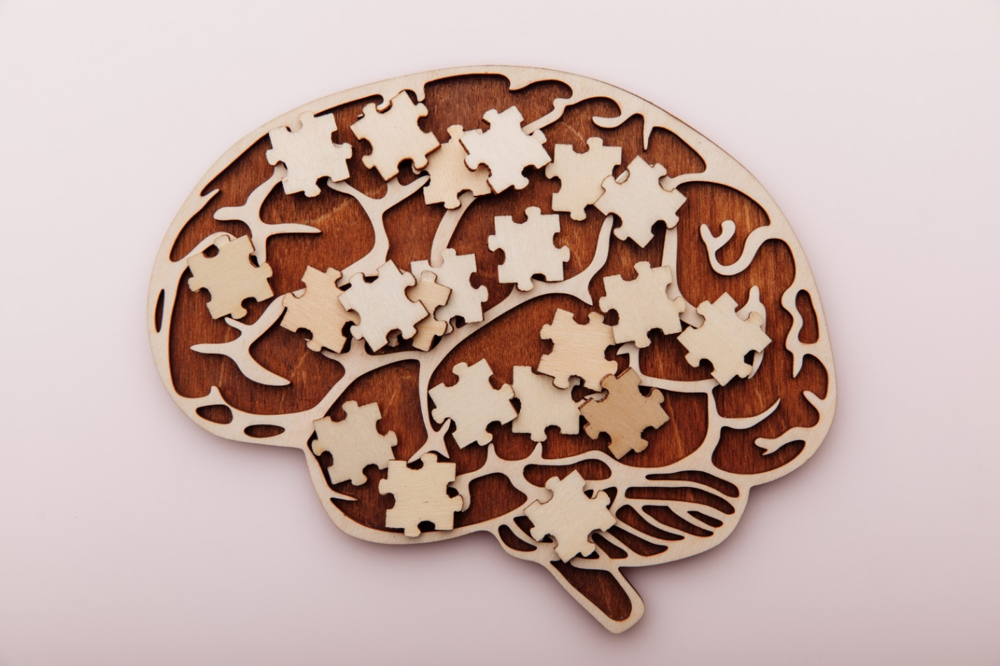 C:\Users\Dell\Downloads\wooden-brain-puzzles-mental-health-problems-with-memory.jpg