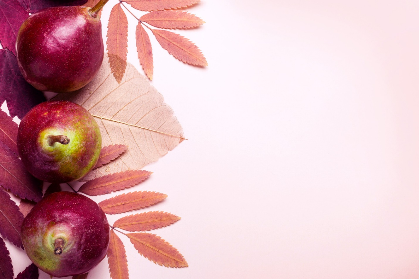 C:\Users\Dell\Downloads\natural-composition-dry-pink-leaves-pears-pink-background-autumn-harvest-concept.jpg